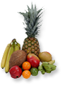 dsgn_166_fruits.png